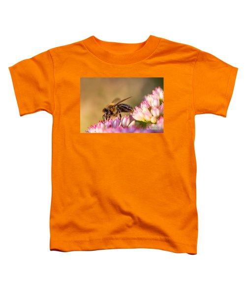 Bee Sitting On Flower Toddler T-Shirt