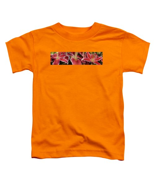 Close-up Of Stargazer Lily Flowers Toddler T-Shirt