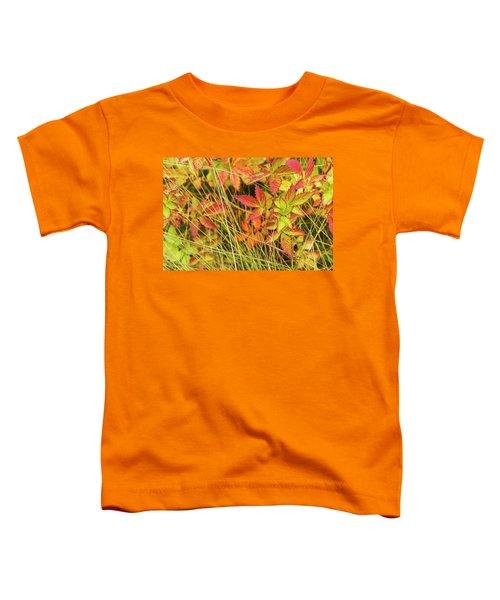 Coloured Leaves, Wild Raspberry Toddler T-Shirt
