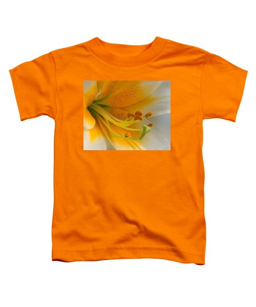Gold Daylily Close-up Toddler T-Shirt