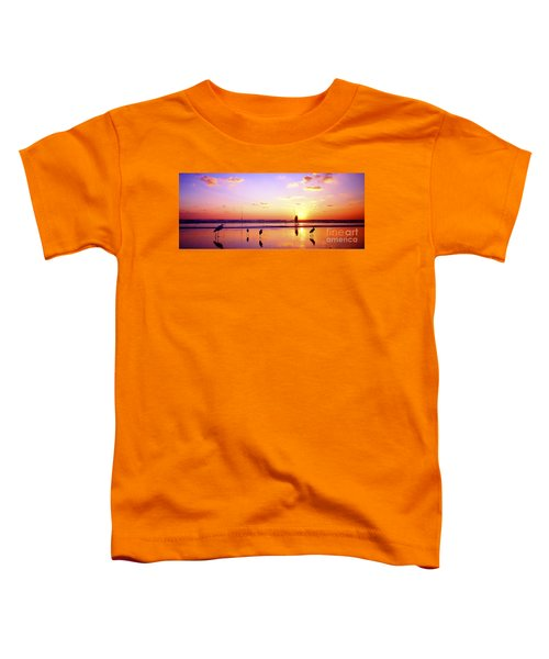 Daytona Beach Fl Surf Fishing And Birds Toddler T-Shirt
