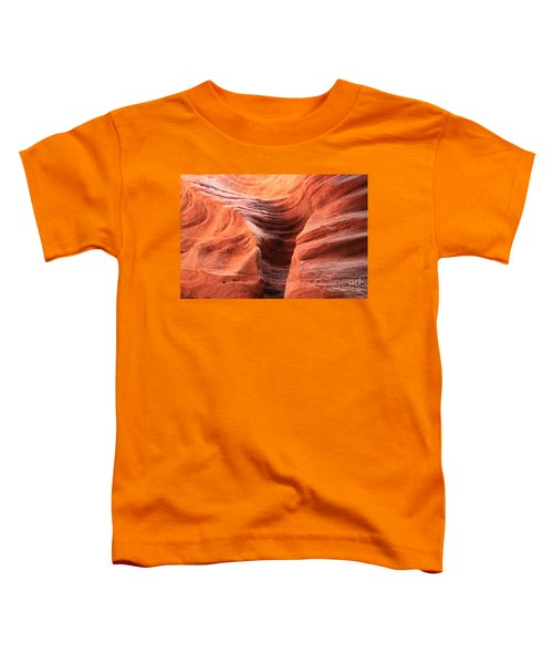 Fire In Buckskin Toddler T-Shirt