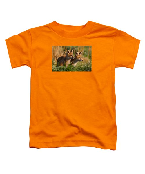 Fox Cubs At Sunrise Toddler T-Shirt