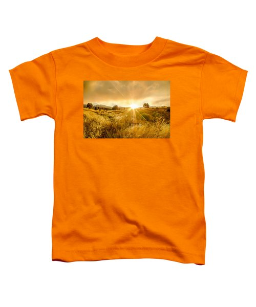 Golden Smoke Toddler T-Shirt