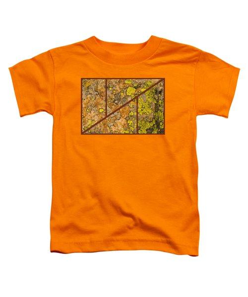 Iron And Lichen Toddler T-Shirt