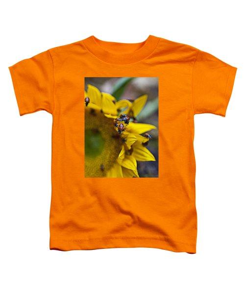 Ladybugs Close Up Toddler T-Shirt