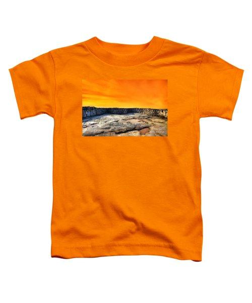 Orange Blaze Toddler T-Shirt