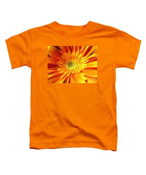 Orange Gerbera Toddler T-Shirt