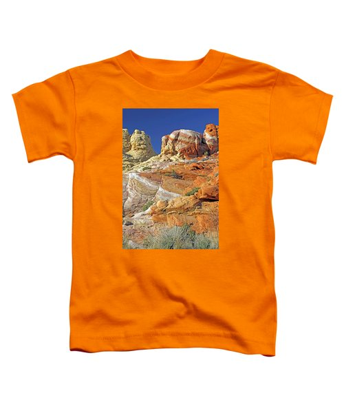 Rainbow Land Toddler T-Shirt