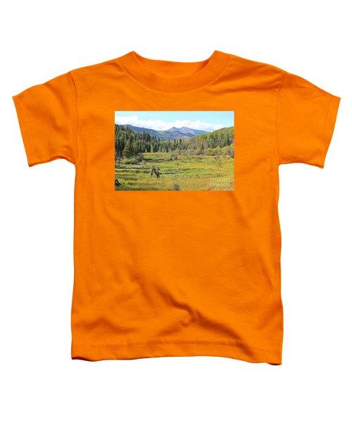 Saddle Mountain Toddler T-Shirt
