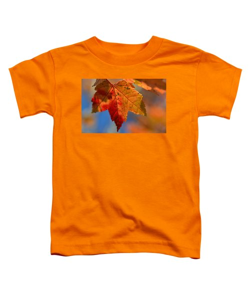 ...through The Autumn Light Toddler T-Shirt