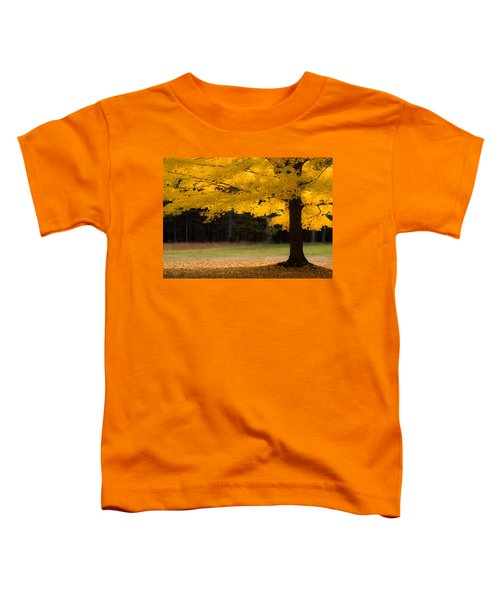 Tree Canopy Glowing In The Morning Sun Toddler T-Shirt