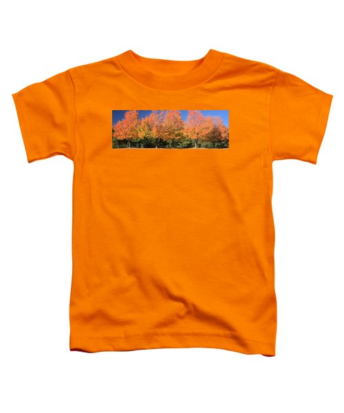 Welcome Autumn Toddler T-Shirt