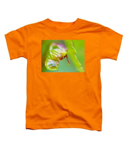 Wet Grape Leaf  Toddler T-Shirt