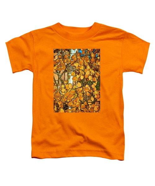 Aspens Gold Toddler T-Shirt