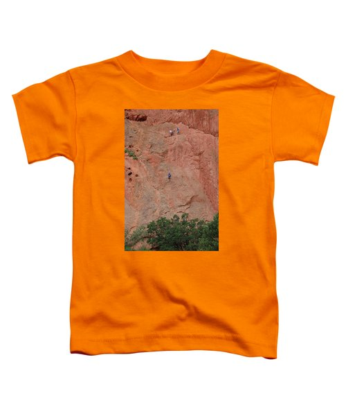 Coming Down The Mountain Toddler T-Shirt