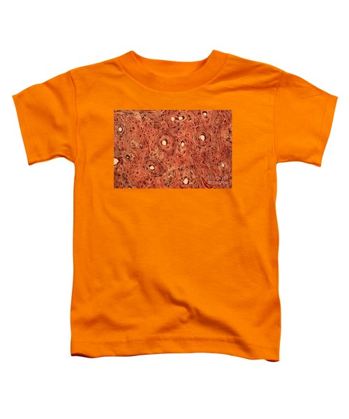 Human Bone Tissue Toddler T-Shirt