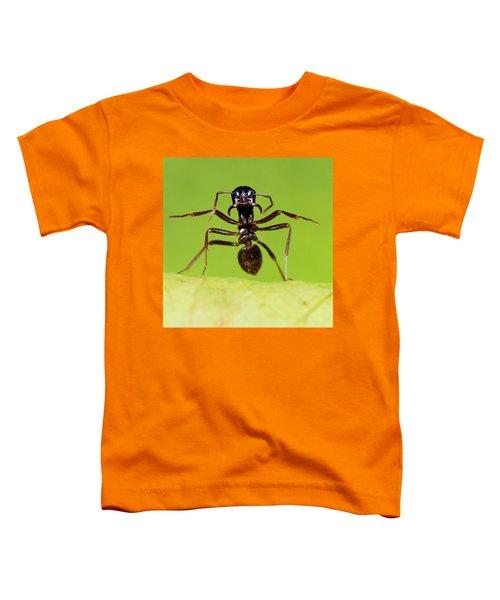 Japanese Slave-making Ant Polyergus Toddler T-Shirt by Satoshi Kuribayashi