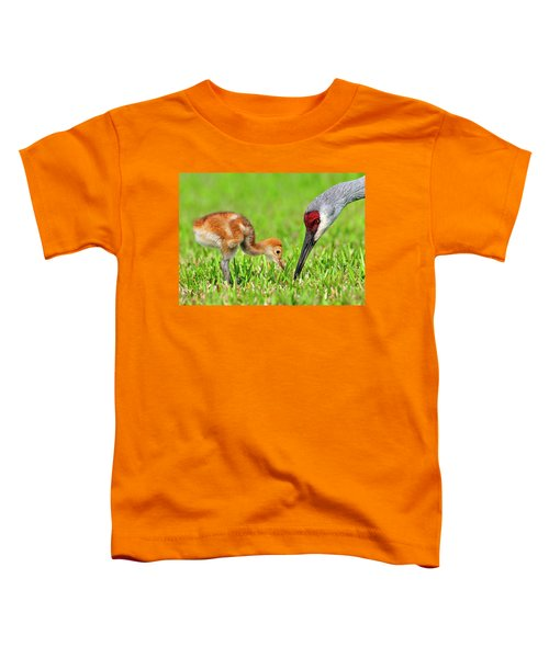 Looking For Bugs Toddler T-Shirt