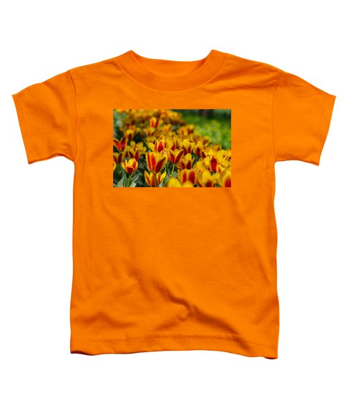 Spring Mood Toddler T-Shirt