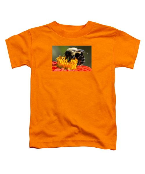 Bumble Bee Toddler T-Shirt