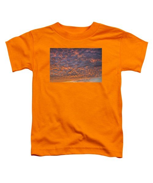 Colorful Toddler T-Shirt