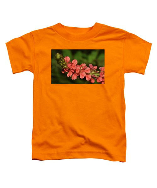 Creeping Indigo - Indigofera Spicata Toddler T-Shirt