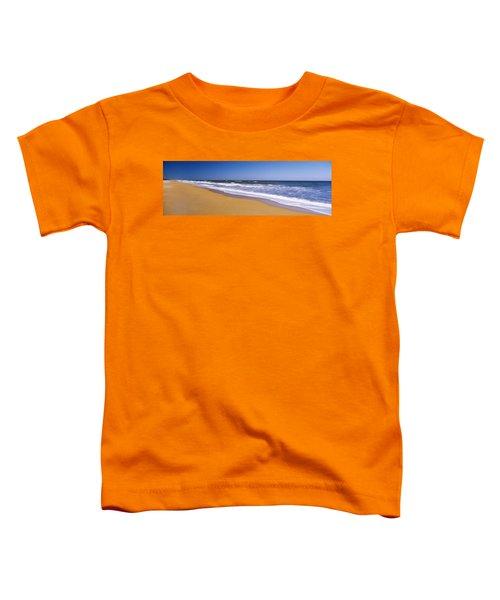 Route A1a, Atlantic Ocean, Flagler Toddler T-Shirt