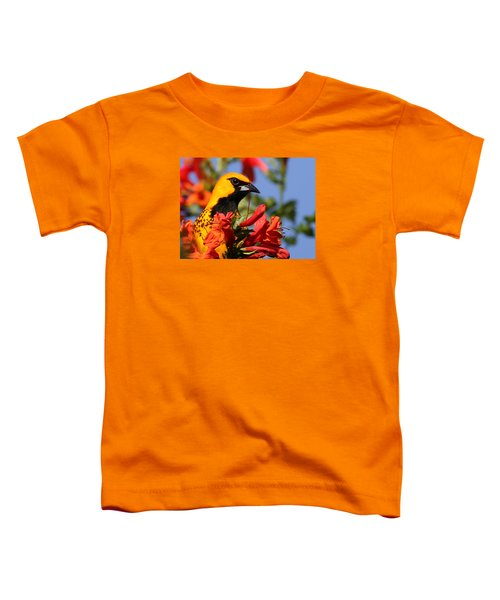 Spot Breasted Oriole Toddler T-Shirt
