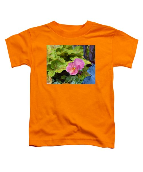 2015 After The Frost At The Garden Pansies 3 Toddler T-Shirt