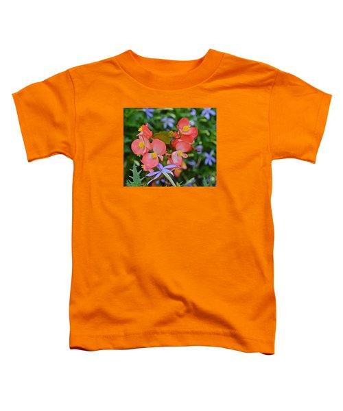 2015 Mid September At The Garden Begonias 2 Toddler T-Shirt