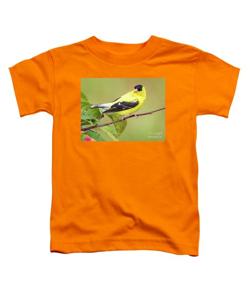 American Goldfinch Toddler T-Shirt