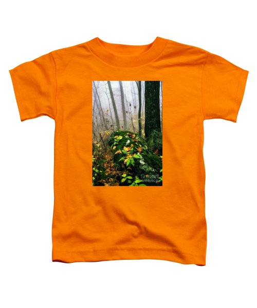 Autumn Monongahela National Forest Toddler T-Shirt