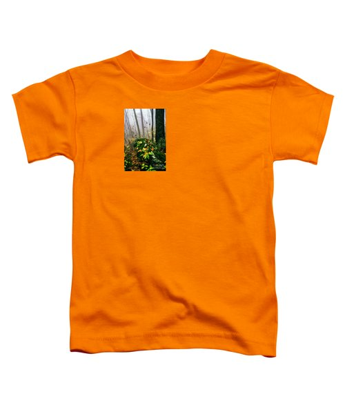 Autumn Monongahela National Forest Toddler T-Shirt