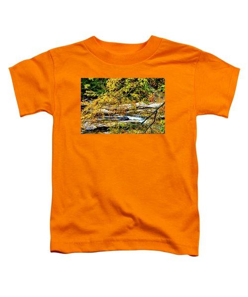 Autumn Middle Fork River Toddler T-Shirt