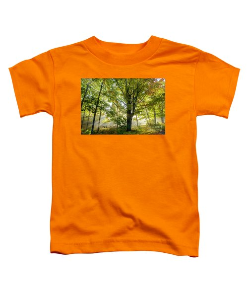 A Misty Fall Morning Toddler T-Shirt