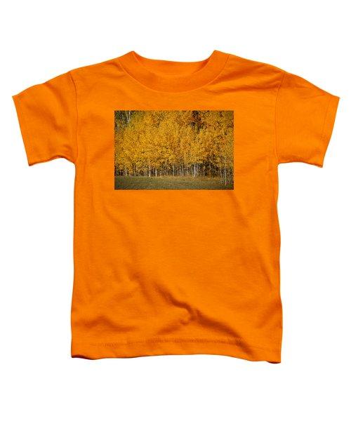 A Stand Of Aspen Toddler T-Shirt