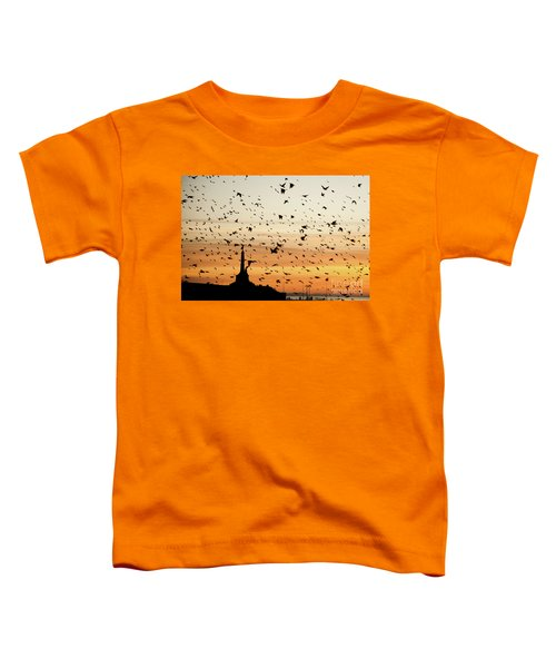 Aberystwyth Starlings At Dusk Flying Over The War Memorial Toddler T-Shirt