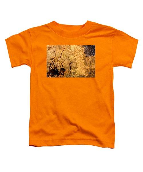 Age Toddler T-Shirt