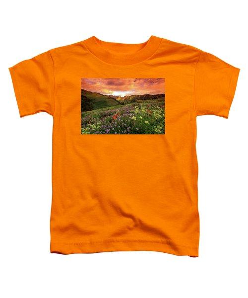 Albion Basin Golden Sunrise Toddler T-Shirt