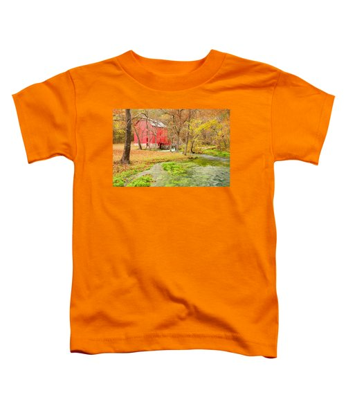 Alley Spring Toddler T-Shirt