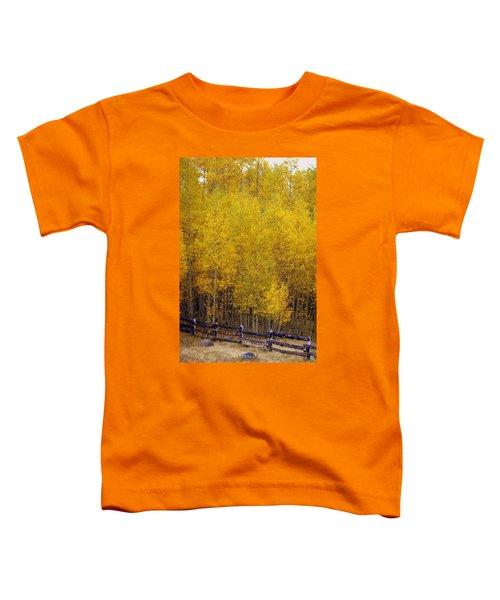 Aspen Fall 2 Toddler T-Shirt