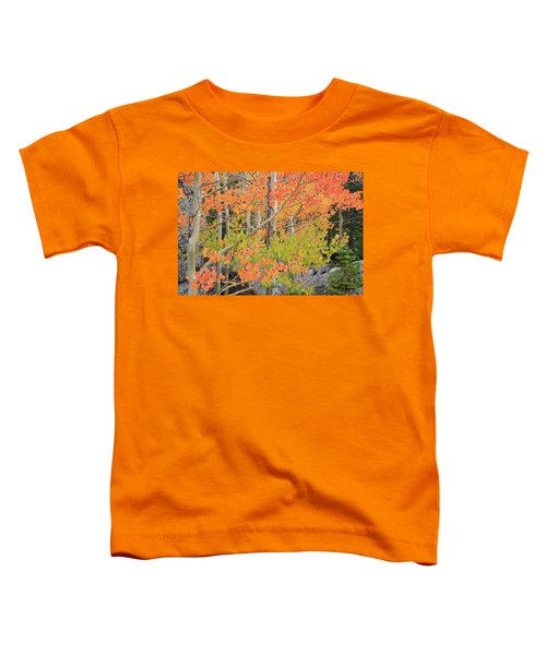 Toddler T-Shirt featuring the photograph Aspen Stoplight by David Chandler