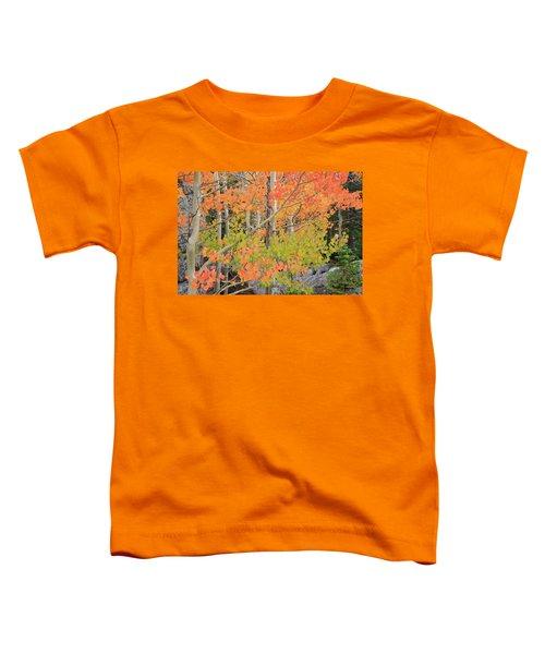 Aspen Stoplight Toddler T-Shirt