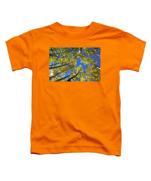 Aspen With Sun Burst Toddler T-Shirt