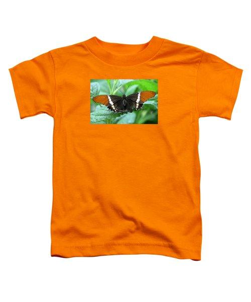 At Rest Toddler T-Shirt