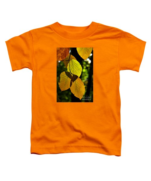 Autumn Beech Tree Leaves Toddler T-Shirt