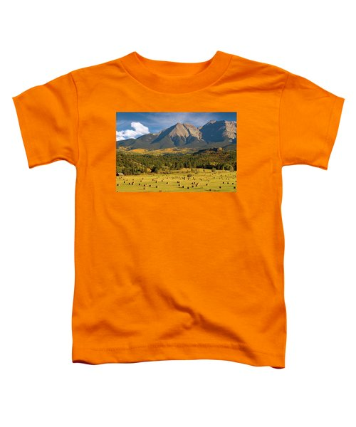 Autumn Hay In The Rockies Toddler T-Shirt