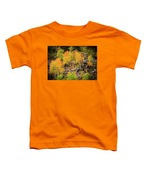 Autumn In The Uinta Mountains Toddler T-Shirt
