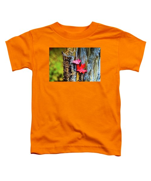 Autumn Silence Toddler T-Shirt